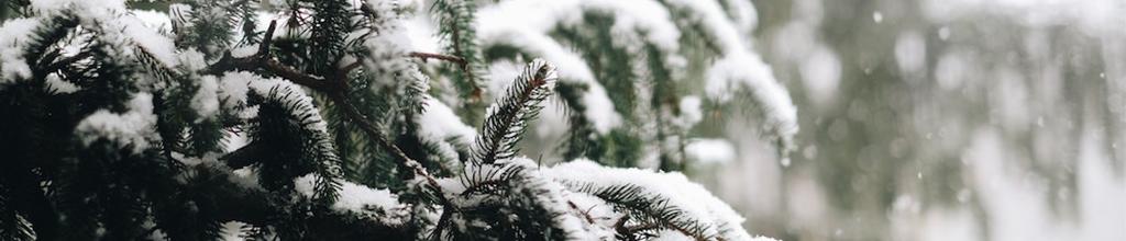 Eteindre la chaudière en hiver pour ou contre